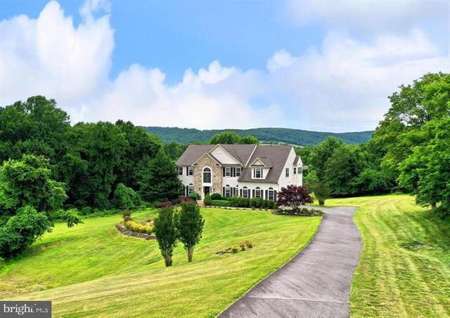 34900 Delia Court, ROUND HILL, VA 20141 (#VALO408948) :: ExecuHome Realty