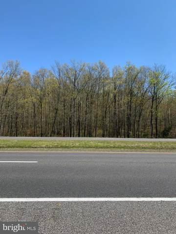 3860 S Dupont Highway, MIDDLETOWN, DE 19709 (#DENC500002) :: The Allison Stine Team