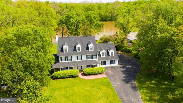 19091 Youngs Cliff Road, STERLING, VA 20165 (#VALO408970) :: Peter Knapp Realty Group
