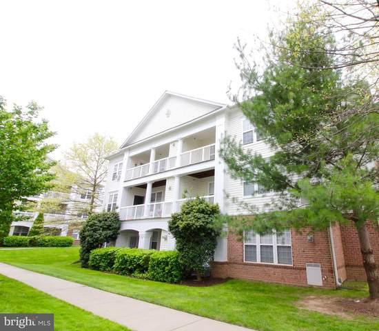 22641 Blue Elder Terrace #301, BRAMBLETON, VA 20148 (#VALO409010) :: AJ Team Realty