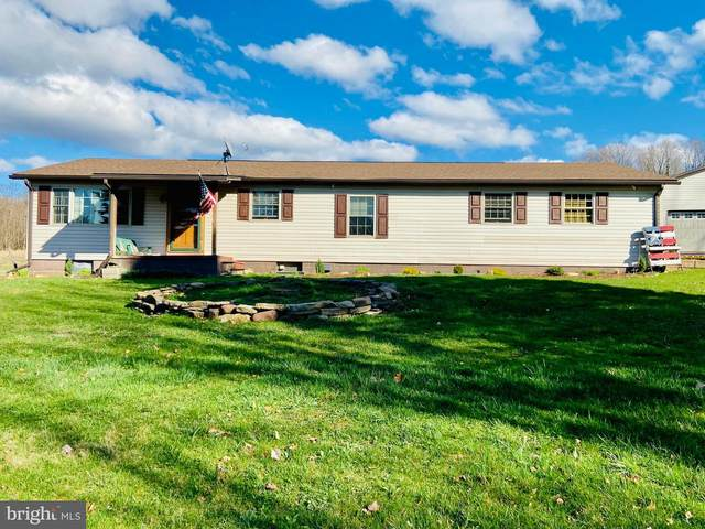 4516 Chestnut Ridge Road, GRANTSVILLE, MD 21536 (#MDGA132452) :: Pearson Smith Realty