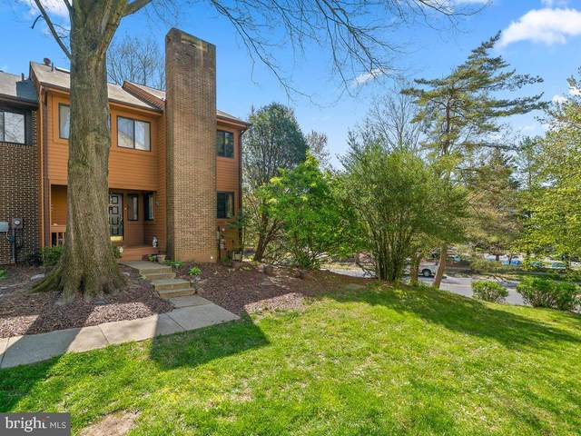 20444 Waters Point Lane, GERMANTOWN, MD 20874 (#MDMC704880) :: The MD Home Team
