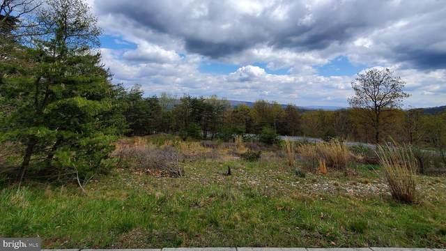 Lot 1 Moccasin Path, CUMBERLAND, MD 21502 (#MDAL134110) :: City Smart Living
