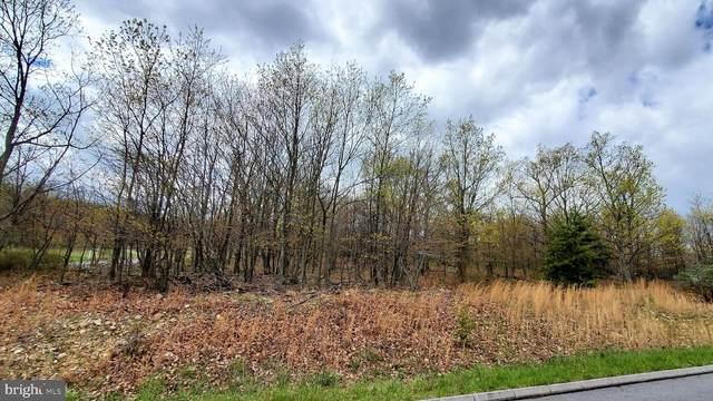 Lot 2 Arrowhead Trail, CUMBERLAND, MD 21502 (#MDAL134112) :: Gail Nyman Group