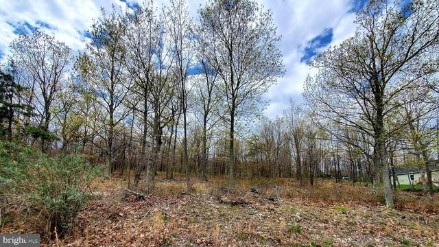 Lot 3 Arrowhead Trail, CUMBERLAND, MD 21502 (#MDAL134114) :: Gail Nyman Group