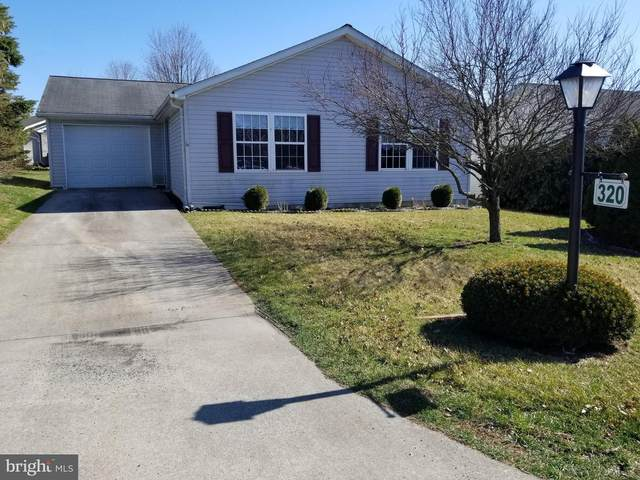 320 Tow Path Lane, PINE GROVE, PA 17963 (#PASK130462) :: The Joy Daniels Real Estate Group