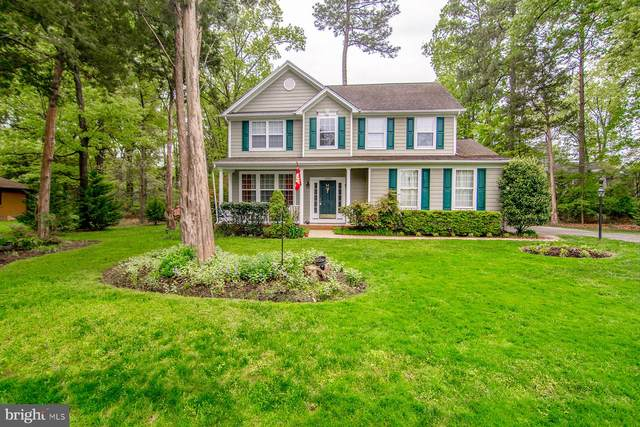 11587 Wollaston Circle, SWAN POINT, MD 20645 (#MDCH213326) :: Tom & Cindy and Associates
