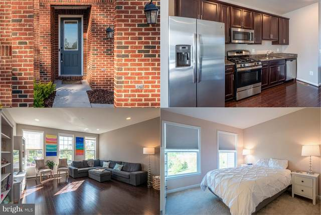 42298 Lancaster Woods Square, CHANTILLY, VA 20152 (#VALO409544) :: Blackwell Real Estate