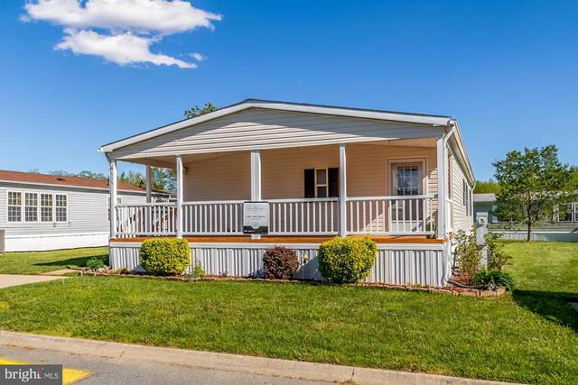 7515 Clearlake Lane, MIDDLE RIVER, MD 21220 (#MDBC492532) :: The Dailey Group