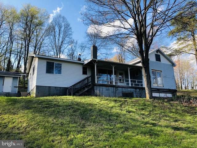 18908 Dan Reed Road, RAWLINGS, MD 21557 (#MDAL134142) :: Tessier Real Estate