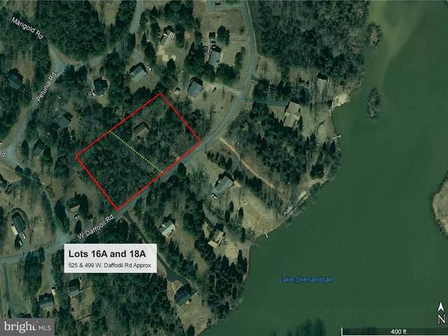 499 W Daffodil Road, RUCKERSVILLE, VA 22968 (#VAGR102968) :: Bob Lucido Team of Keller Williams Integrity