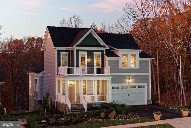 Pipers Brook Drive, PURCELLVILLE, VA 20132 (#VALO409778) :: LoCoMusings