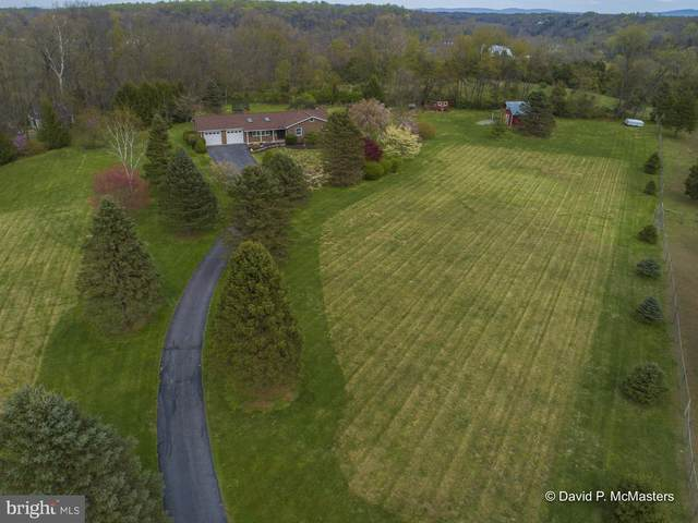 224 Edward Drive, MARTINSBURG, WV 25404 (#WVBE176804) :: SURE Sales Group