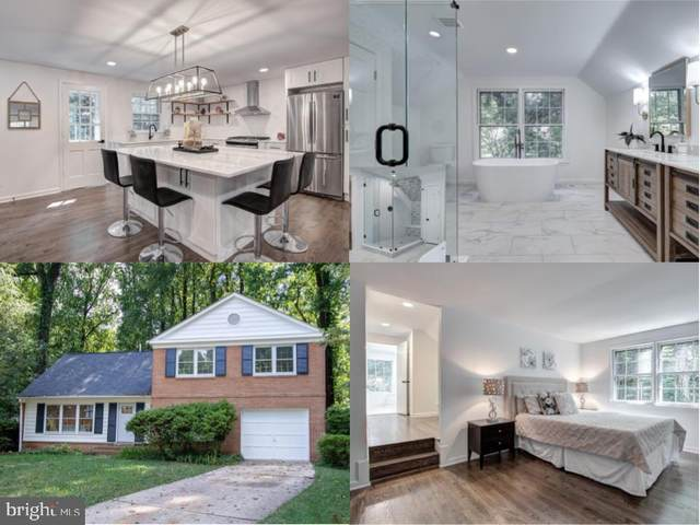 8211 Light Horse Court, ANNANDALE, VA 22003 (#VAFX1126636) :: Debbie Dogrul Associates - Long and Foster Real Estate
