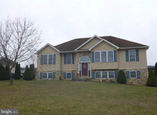 476 Beech Tree Street, SHIPPENSBURG, PA 17257 (#PAFL172440) :: Bruce & Tanya and Associates