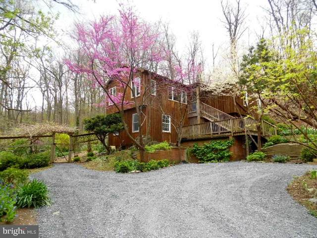 610 Wilderness Road, LINDEN, VA 22642 (#VAWR140168) :: Cristina Dougherty & Associates