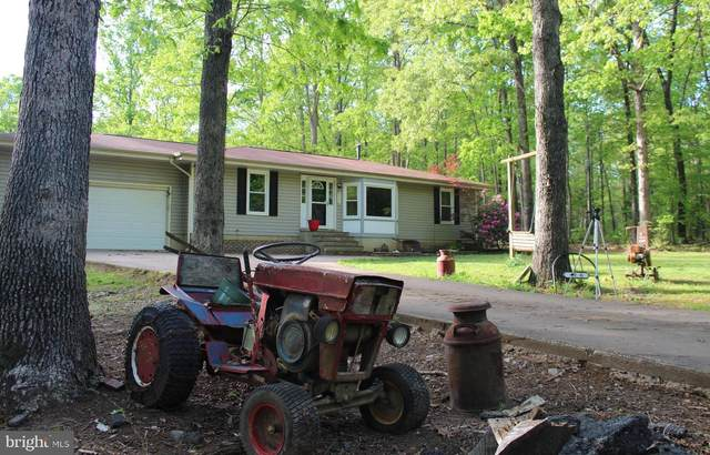 4906 Greenbranch Street, PARTLOW, VA 22534 (#VASP221666) :: Eng Garcia Properties, LLC