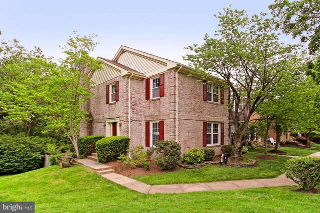 8211 Clifton Farm Court, ALEXANDRIA, VA 22306 (#VAFX1127044) :: Tom & Cindy and Associates