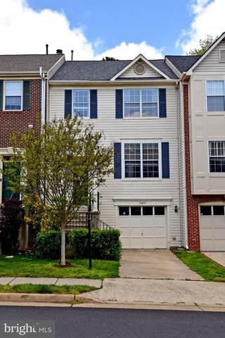 20827 Butterwood Falls Terrace, STERLING, VA 20165 (#VALO410350) :: City Smart Living