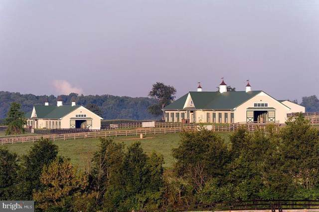 163 Little Britain Church Road, PEACH BOTTOM, PA 17563 (#PALA162664) :: Colgan Real Estate