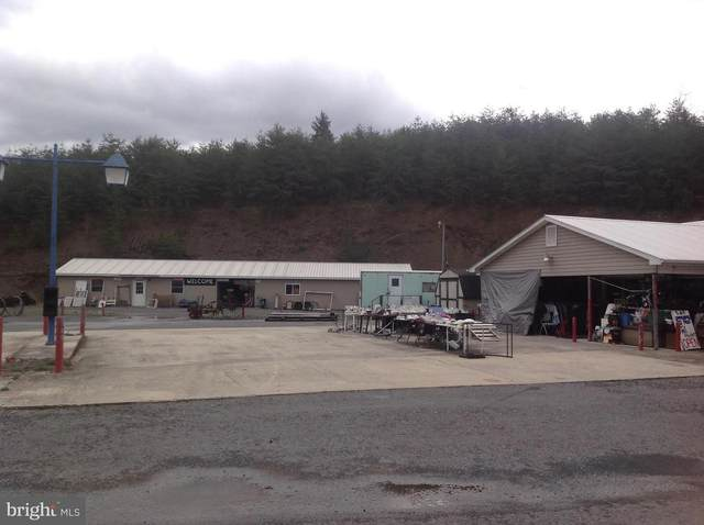 1562 Rig Road, RIG, WV 26836 (#WVHD105942) :: The Redux Group