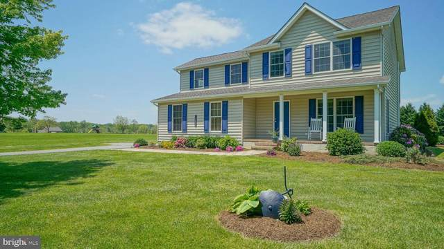 12030 Parson Hill Court, WORTON, MD 21678 (#MDKE116532) :: Peter Knapp Realty Group
