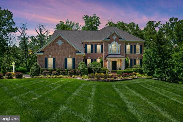513 Broad Stream Lane, DAVIDSONVILLE, MD 21035 (#MDAA433620) :: Keller Williams Flagship of Maryland