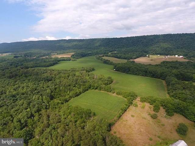 2274 Waterfall, HARRISONVILLE, PA 17228 (#PAFU104496) :: ExecuHome Realty