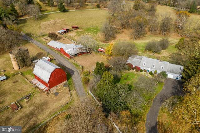 38978 Goose Creek Lane, LEESBURG, VA 20175 (#VALO410526) :: Debbie Dogrul Associates - Long and Foster Real Estate