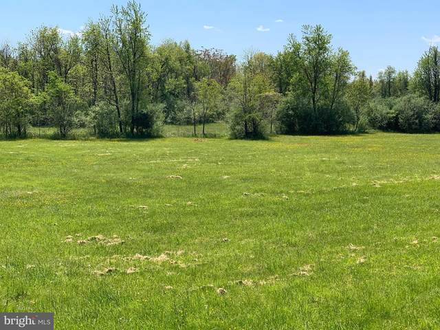 Crums Church Rd, BERRYVILLE, VA 22611 (#VACL111442) :: Radiant Home Group