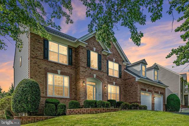 16668 Leocrie Place, WOODBRIDGE, VA 22191 (#VAPW494656) :: Seleme Homes