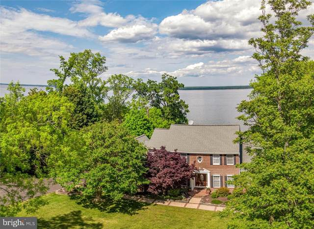 19 Potomac Overlook Lane, STAFFORD, VA 22554 (#VAST221868) :: Tom & Cindy and Associates
