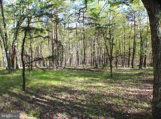 Lot 4 Pylor Way, MAYSVILLE, WV 26833 (#WVGT103208) :: Hill Crest Realty