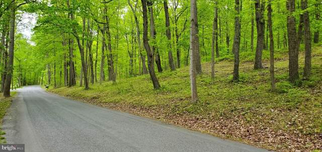 4327 Ebenezer Road 33 A 1A, BLUEMONT, VA 20135 (#VACL111460) :: The Bob & Ronna Group