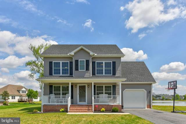 205 David Ct, FRUITLAND, MD 21826 (#MDWC108102) :: ExecuHome Realty