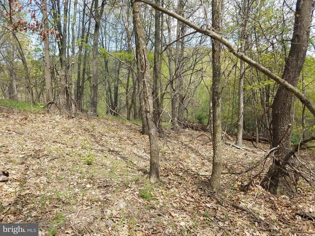 South Fork Mountain Road, UPPER TRACT, WV 26866 (#WVPT101470) :: The Bob & Ronna Group