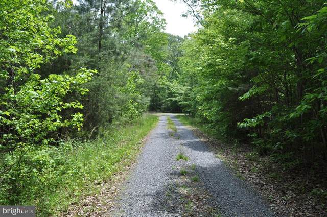 Lot 5 Holly Point Drive, MONTROSS, VA 22520 (#VAWE116408) :: Bob Lucido Team of Keller Williams Integrity