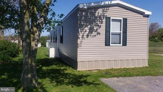 4 Buffalo Dr, SHIPPENSBURG, PA 17257 (#PACB123518) :: The Joy Daniels Real Estate Group