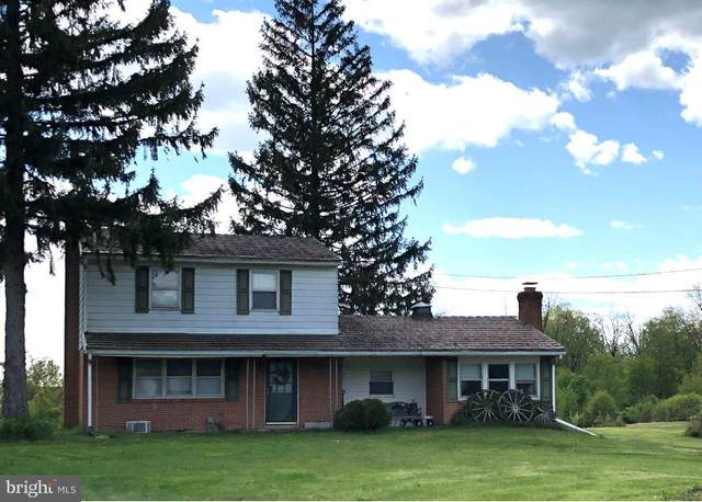 653 Mountain Street, ENOLA, PA 17025 (#PACB123520) :: Liz Hamberger Real Estate Team of KW Keystone Realty