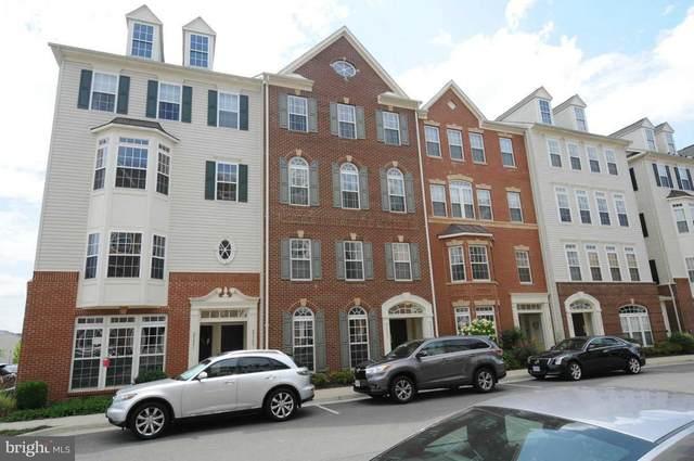 25399 Patriot Terrace, ALDIE, VA 20105 (#VALO411000) :: Erik Hoferer & Associates