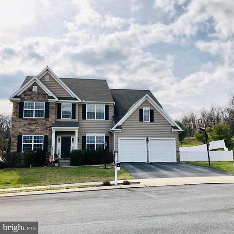 12 Tait Drive, NEW FREEDOM, PA 17349 (#PAYK137582) :: The Joy Daniels Real Estate Group