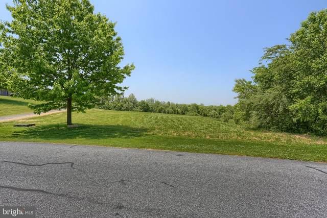 140 Autumn Leaf Lane, MANHEIM, PA 17545 (#PALA162958) :: Flinchbaugh & Associates