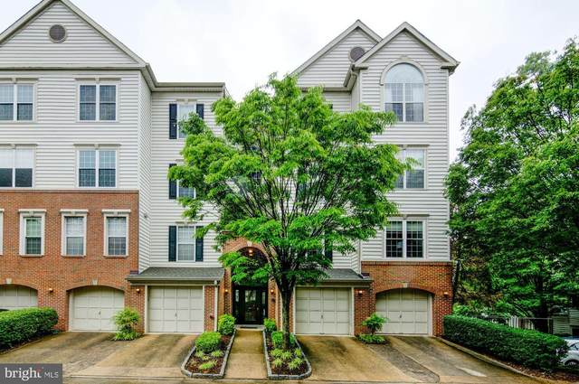 4689 Longstreet Lane #203, ALEXANDRIA, VA 22311 (#VAAX246346) :: Tom & Cindy and Associates