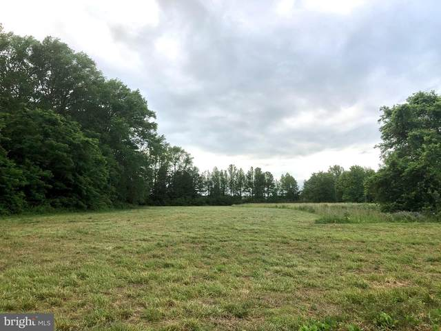 Lot 3 Five Farms Drive, PRINCESS ANNE, MD 21853 (#MDSO103510) :: Brandon Brittingham's Team
