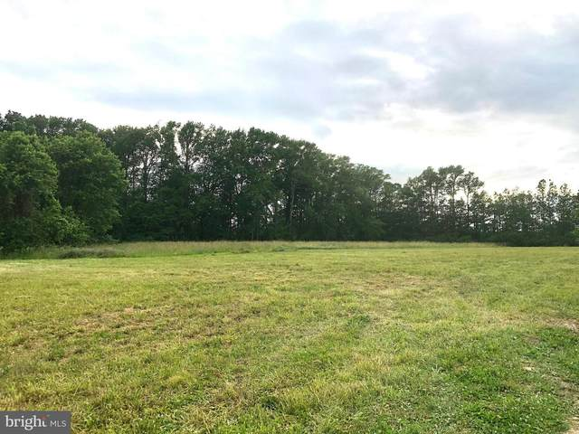 Lot 2 Five Farms Drive, PRINCESS ANNE, MD 21853 (#MDSO103512) :: Brandon Brittingham's Team