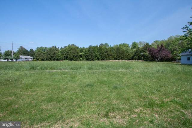 Potomac Shores, LEONARDTOWN, MD 20650 (#MDSM169444) :: The Maryland Group of Long & Foster Real Estate