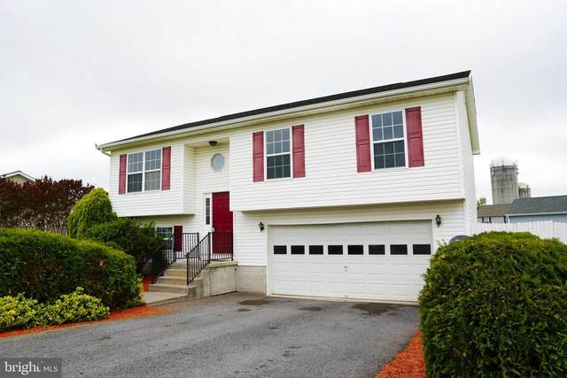38 Sedge Wren Lane, MARTINSBURG, WV 25405 (#WVBE177222) :: The Redux Group