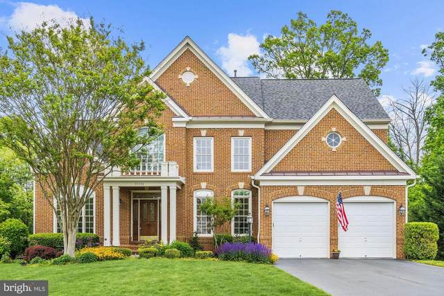 20576 Blue Water Court, ASHBURN, VA 20147 (#VALO411186) :: The Gus Anthony Team