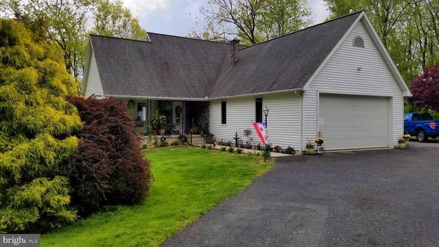 40 Summer Hill Road, SCHUYLKILL HAVEN, PA 17972 (#PASK130608) :: Ramus Realty Group