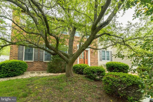 2513 Buggywhip Circle, NORRISTOWN, PA 19403 (#PAMC648880) :: The Steve Crifasi Real Estate Group